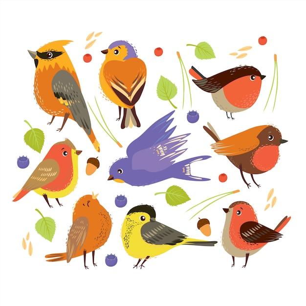 Conjunto com pássaros e elementos de plantas da floresta. tempo de outono. Vetor grátis
