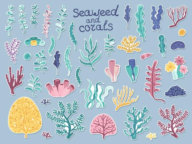 Conjunto de adesivos com algas e corais Vetor Premium