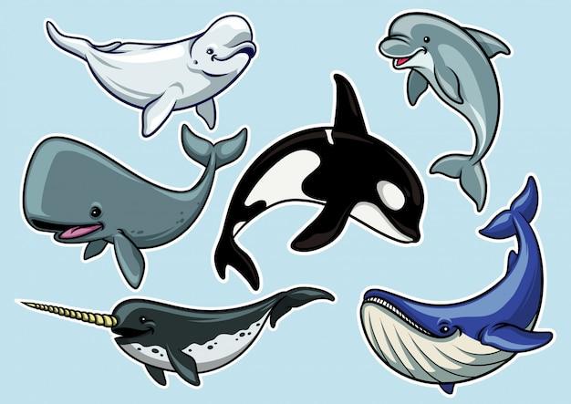 Conjunto de alegre vários baleias Vetor Premium
