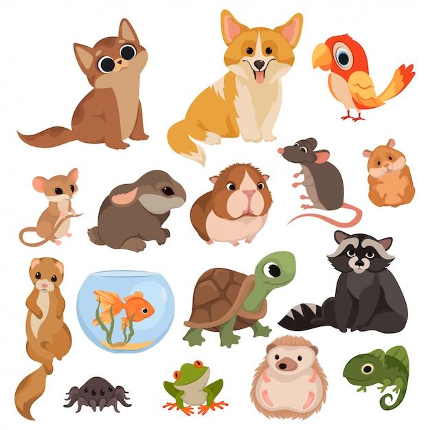Conjunto de animais de estimação dos desenhos animados. coleção de vários mamíferos domésticos, roedores, aves, répteis. Vetor Premium