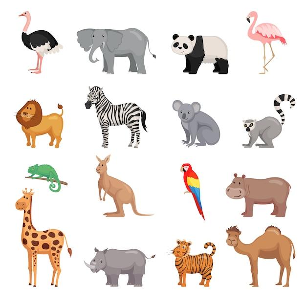 Conjunto de animais do zoológico Vetor Premium