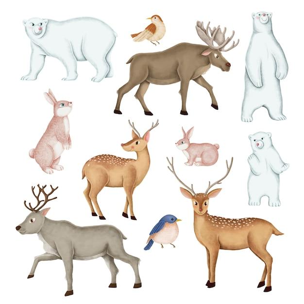 Conjunto de animais selvagens desenhados à mão Vetor grátis