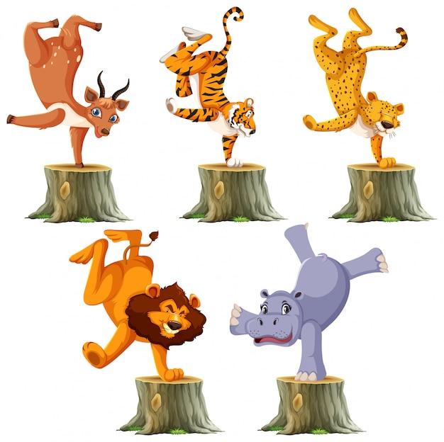 Conjunto de animais selvagens em pé por um lado Vetor grátis