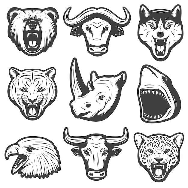 Conjunto de animais selvagens vintage Vetor grátis