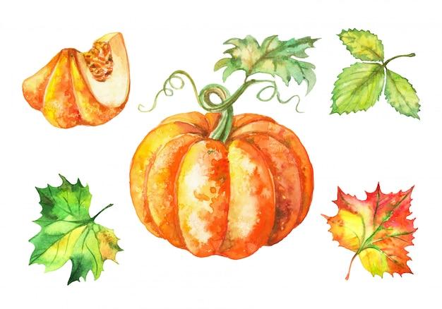 Conjunto de aquarela abóbora e folhas de outono. Vetor Premium