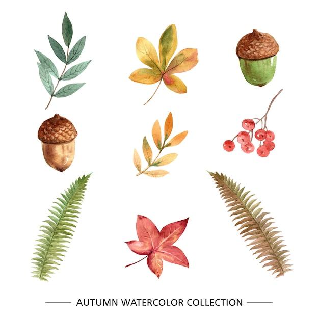 Conjunto de aquarela criativa outono Vetor grátis