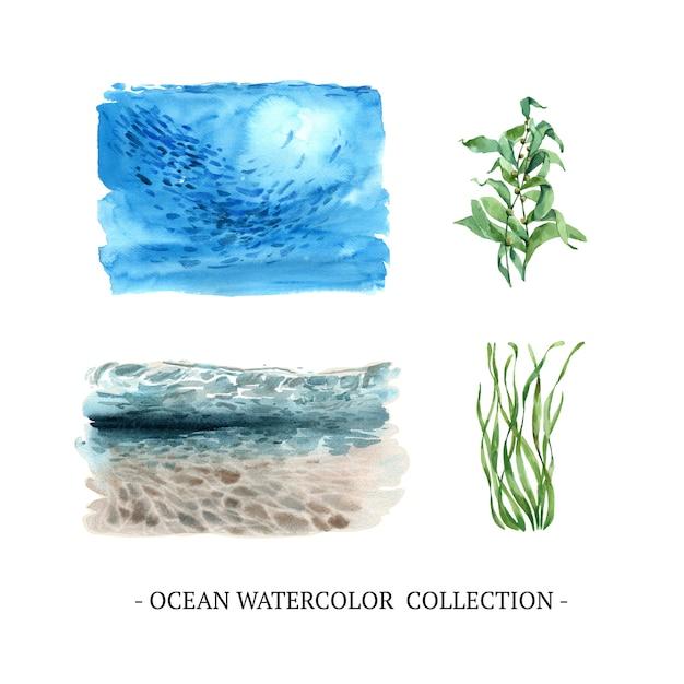 Conjunto de aquarela no fundo do mar, algas Vetor grátis