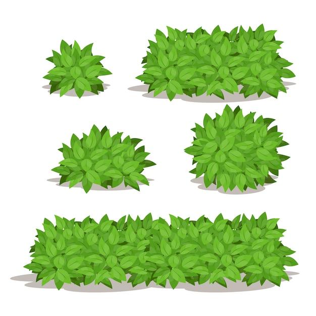 Conjunto de arbustos com várias ilustrações vetoriais em forma Vetor Premium
