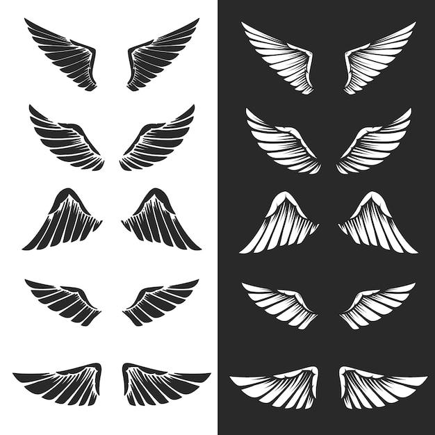 Conjunto de asas em fundo branco. elementos para o logotipo, etiqueta, emblema, sinal. imagem Vetor Premium