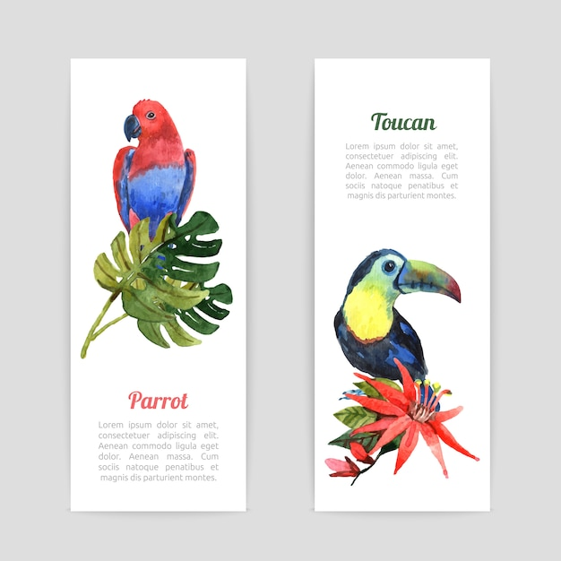 Conjunto de bandeiras aquarela pássaros tropicais Vetor grátis
