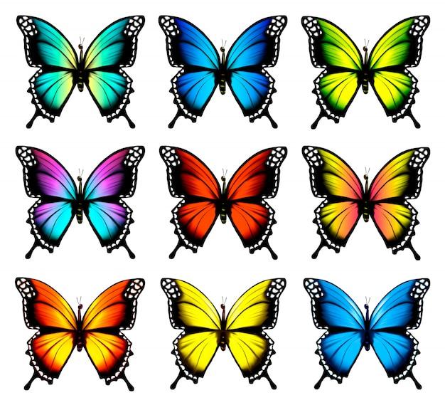 Conjunto de borboletas coloridas. . Vetor Premium