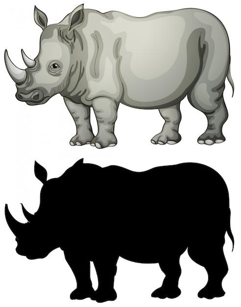 Conjunto de caracteres de rinoceronte Vetor grátis