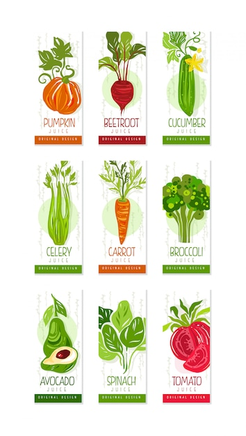 Conjunto de cartões ou banners verticais de legumes frescos abóbora, beterraba, pepino, aipo, cenoura, brócolis, abacate, espinafre, tomate. original desenhado à mão Vetor Premium