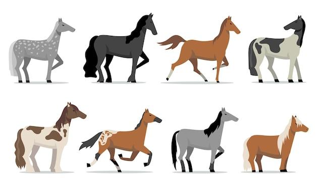 Conjunto de cavalos garanhões. garanhões de corrida de raça colorida em pé e correndo. ilustrações vetoriais planas isoladas para criação, criação de cavalos, negócios, animais de estimação Vetor grátis