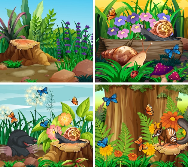 Conjunto de cena de fundo com tema da natureza Vetor grátis
