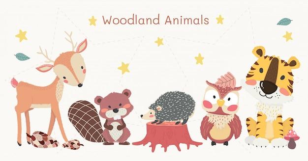 Conjunto de clipart de animais fofos da floresta, tigre, rena, coruja, castor e ouriço Vetor Premium