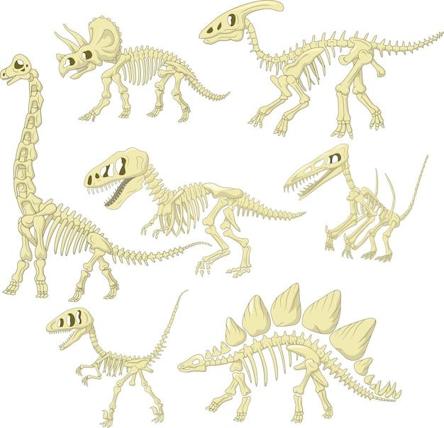 Conjunto de coleta de esqueleto de dinossauros dos desenhos animados Vetor Premium