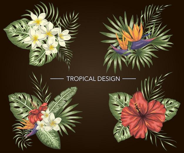 Conjunto de composições tropicais com folhas de hibisco, plumeria, strelitzia, monstera e palm Vetor Premium