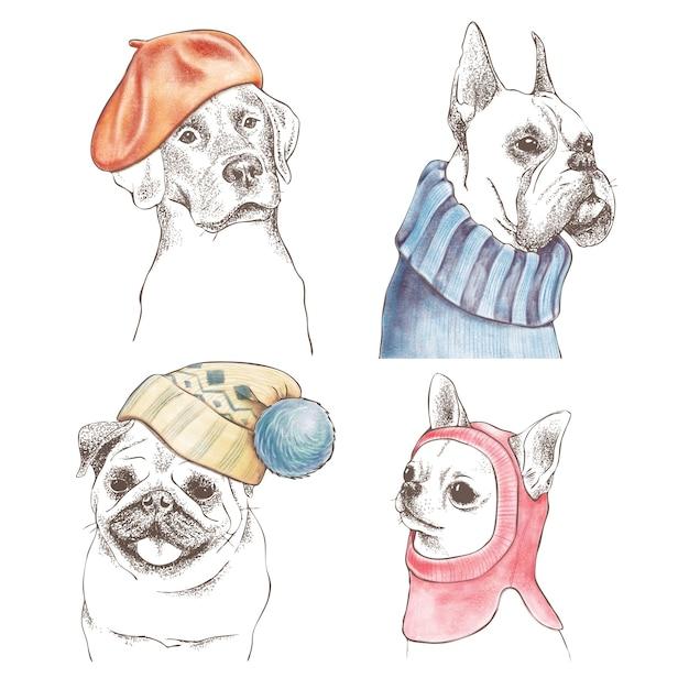 Conjunto de contorno desenhado de mão de cães engraçados Vetor Premium