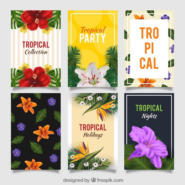 Conjunto De Convites De Festa Tropical Baixar Vetores Grátis