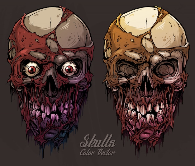 Conjunto de crânios humanos coloridos gráficos detalhados Vetor Premium