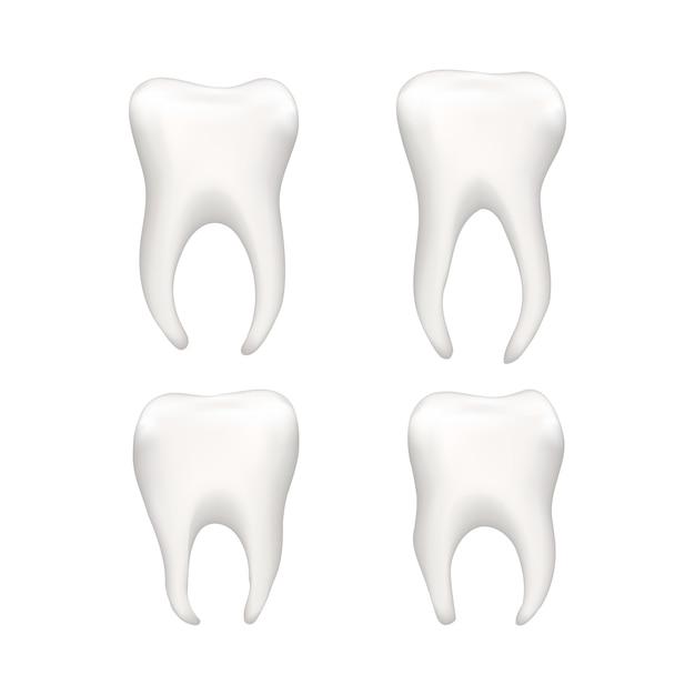 Conjunto de dentes humanos realistas brilhantes em branco Vetor Premium