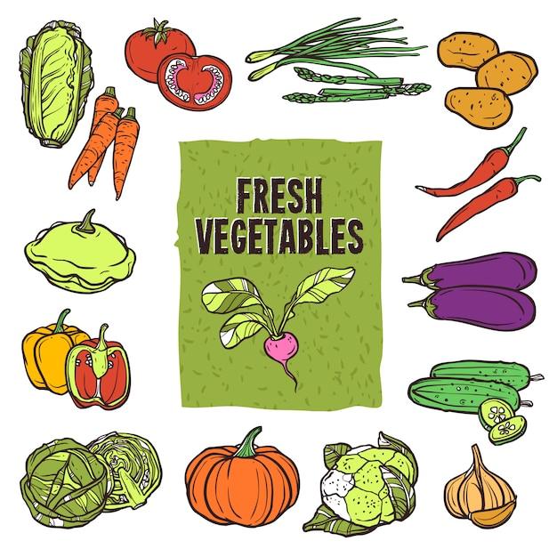 Conjunto de desenho de vegetais Vetor grátis