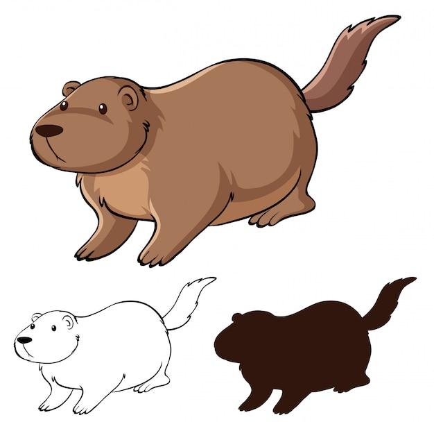 Conjunto de desenhos animados de castor Vetor grátis