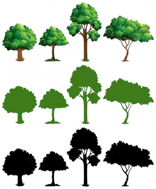 Conjunto de design de árvore Vetor grátis