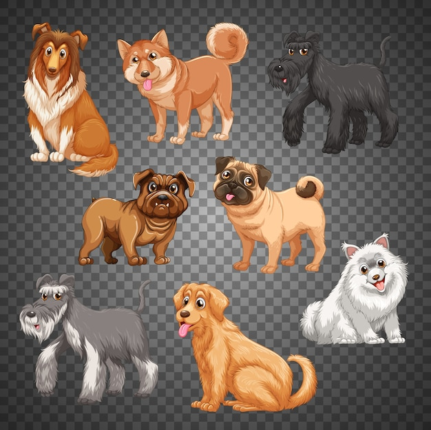 Conjunto de diferentes cães isolados Vetor Premium