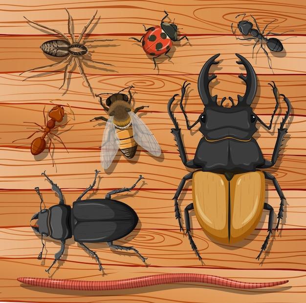 Conjunto de diferentes insetos na superfície de madeira Vetor Premium