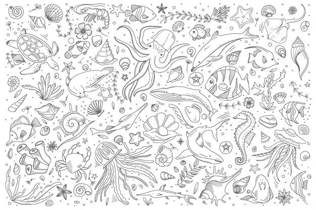 Conjunto de doodle de vida marinha Vetor Premium