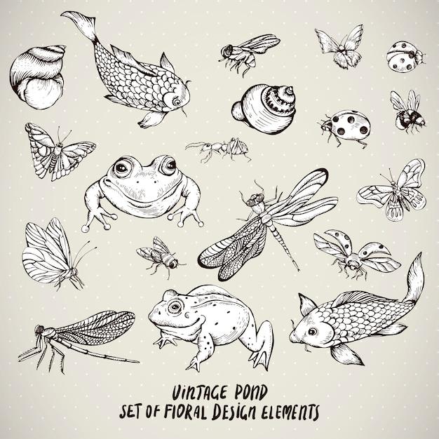 Conjunto de elementos de animais de água vintage lagoa Vetor Premium