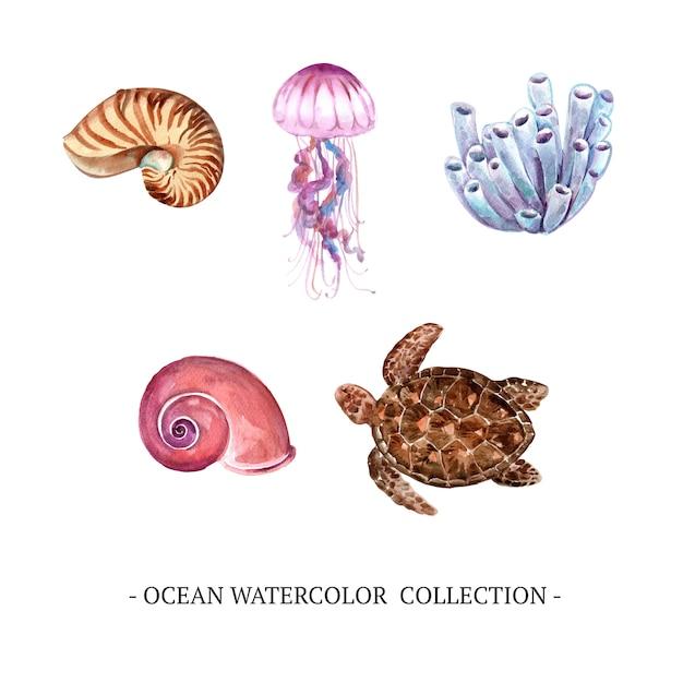 Conjunto de elementos isolados do oceano em aquarela Vetor grátis