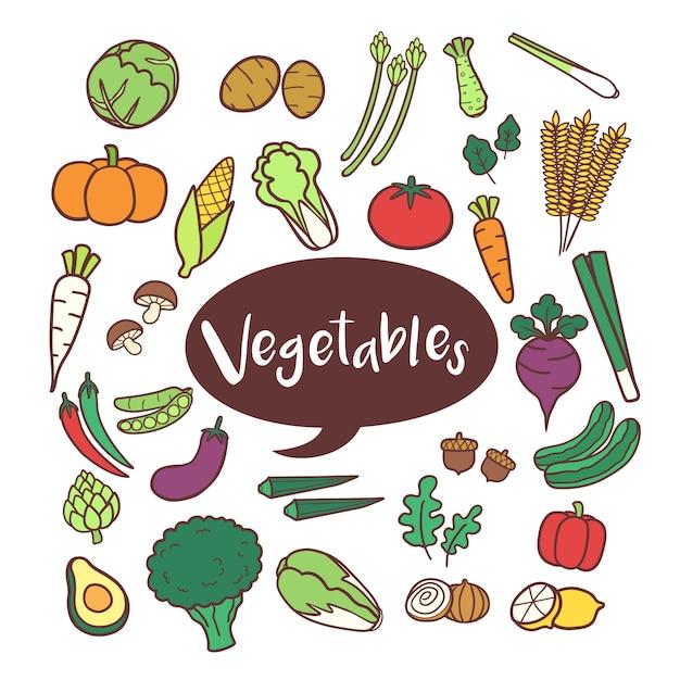 Conjunto de elementos vegetais na mão desenhada doodles Vetor Premium