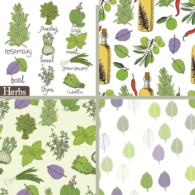 Conjunto de ervas e especiarias Vetor grátis