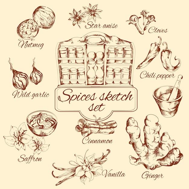 Conjunto de esboços de especiarias Vetor grátis