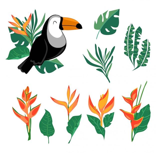 Conjunto de estampa e folhas de tucano, pássaro exótico e flor de heliconia, pássaro tropical. Vetor Premium