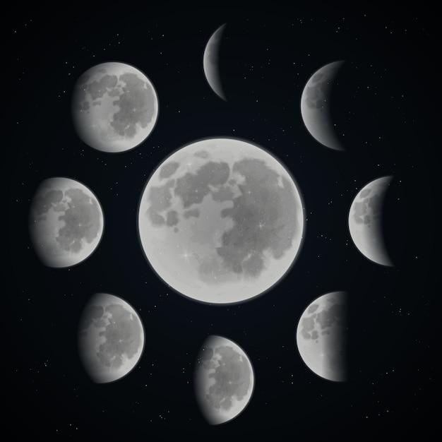 Conjunto de fases da lua Vetor grátis
