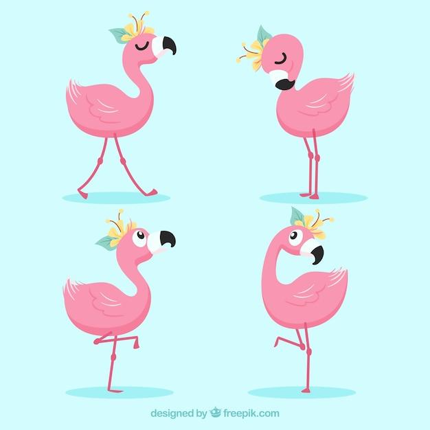 Conjunto de flamingos cor de rosa com diferentes posturas Vetor grátis