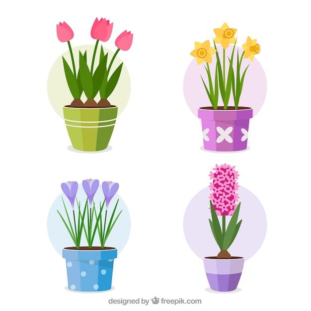 Conjunto de flores coloridas em estilo simples Vetor grátis