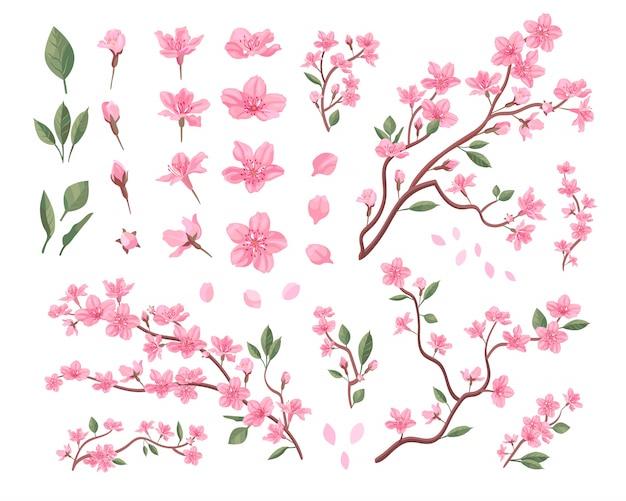 Conjunto de flores de sakura Vetor grátis