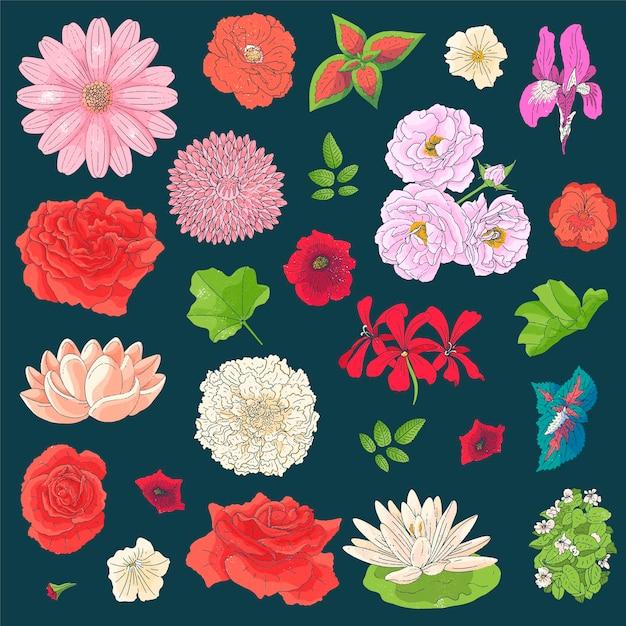Conjunto de flores diferentes no estilo de desenho do doodle. elementos desenhados à mão Vetor Premium