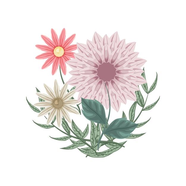 Conjunto de flores e dálias para decoração Vetor Premium