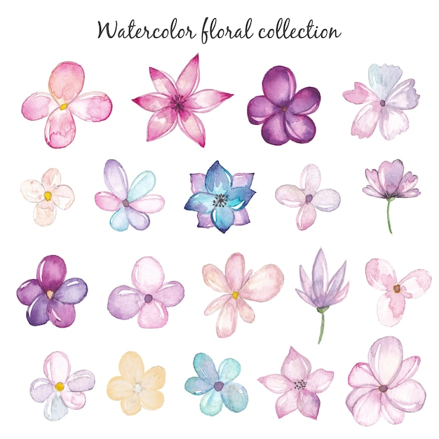 Conjunto de flores em aquarela Vetor Premium