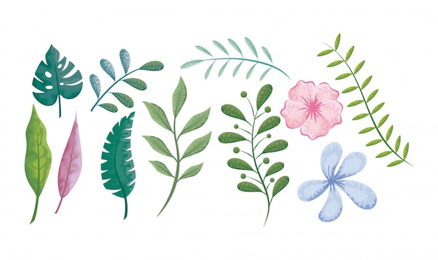 Conjunto de flores, folhas e plantas Vetor Premium