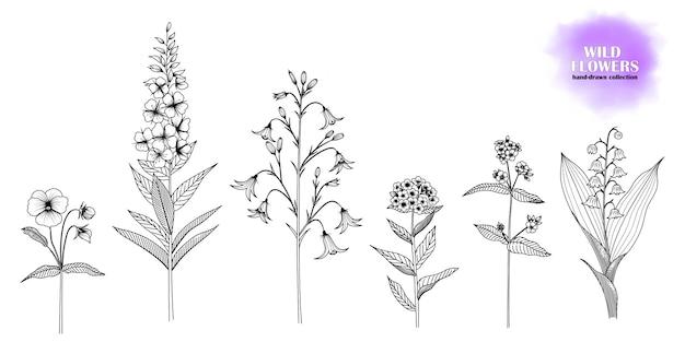 Conjunto de flores silvestres desenhados à mão. Vetor Premium