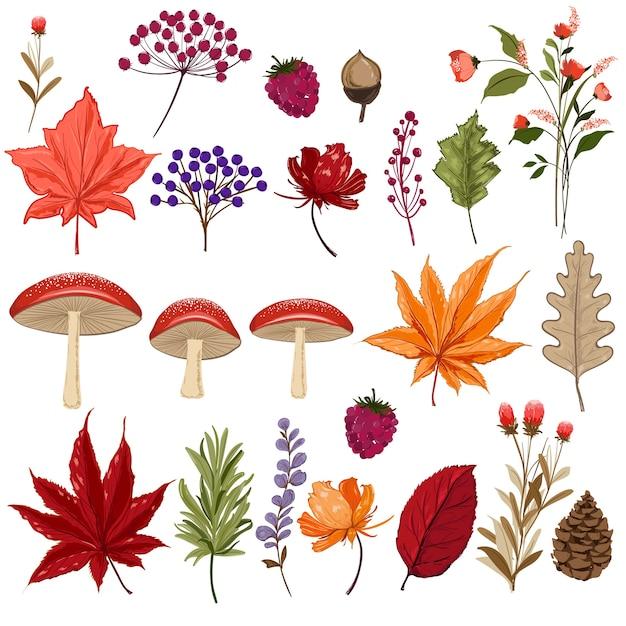 Conjunto de folhas de outono coloridas Vetor Premium