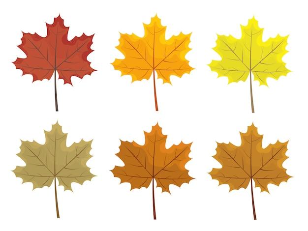 Conjunto de folhas de outono coloridos. desenhos animados e folhas de estilo simples. Vetor Premium