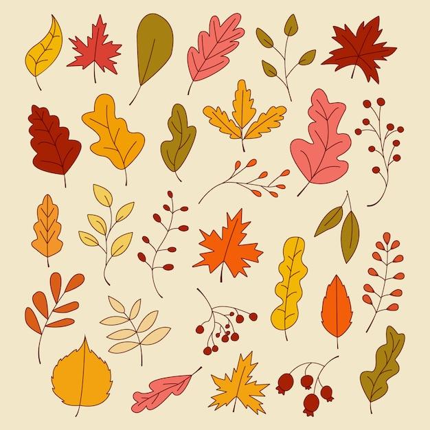 Conjunto de folhas de outono, ilustração vetorial Vetor Premium